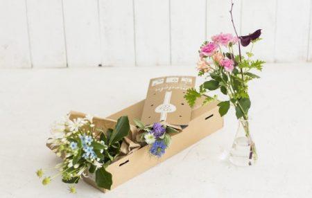 メデルの2種類のコースからとどくお花