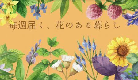日本総合園芸のトップ画像